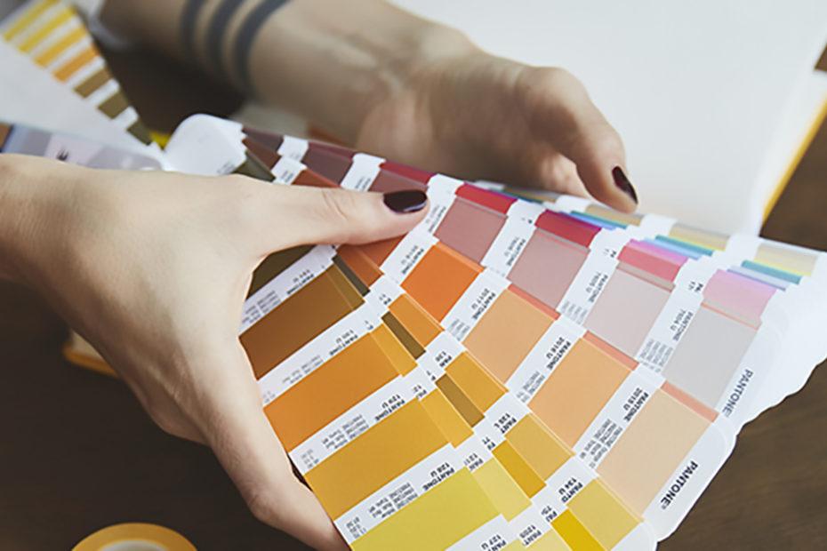 brand branding colori palette board logo marchio marketing